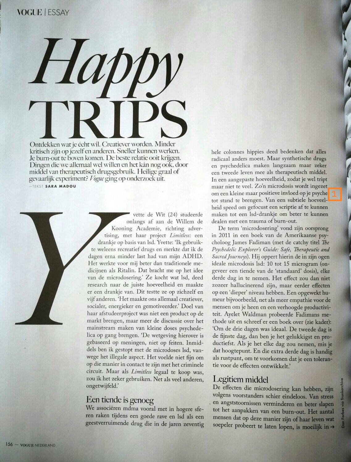 Guided Tripping in Happy Trips Vogue